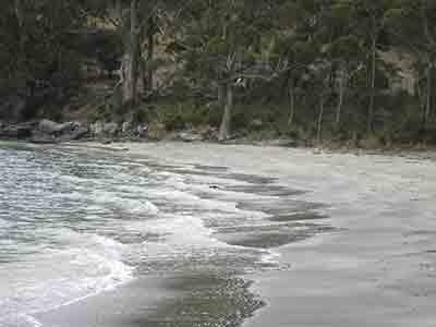 Adventure Bay shore