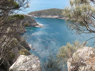 Bruny island Fluted Cape walk view