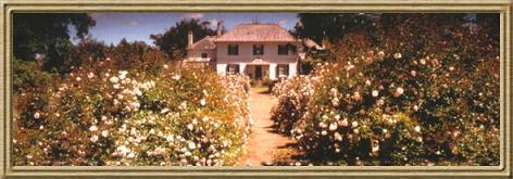 Brickendon Historic Farm & Gardens