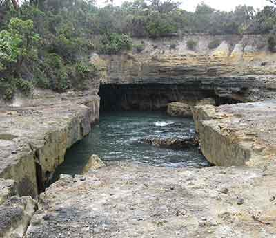 Tasman Blowhole