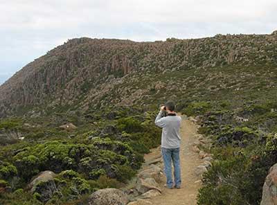 mount wellington walk